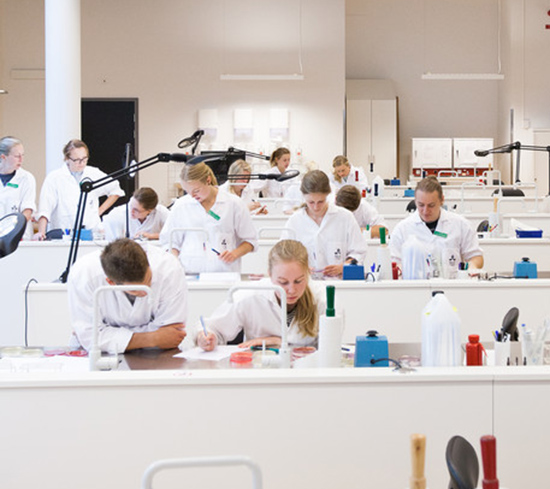 SLU students in the lab